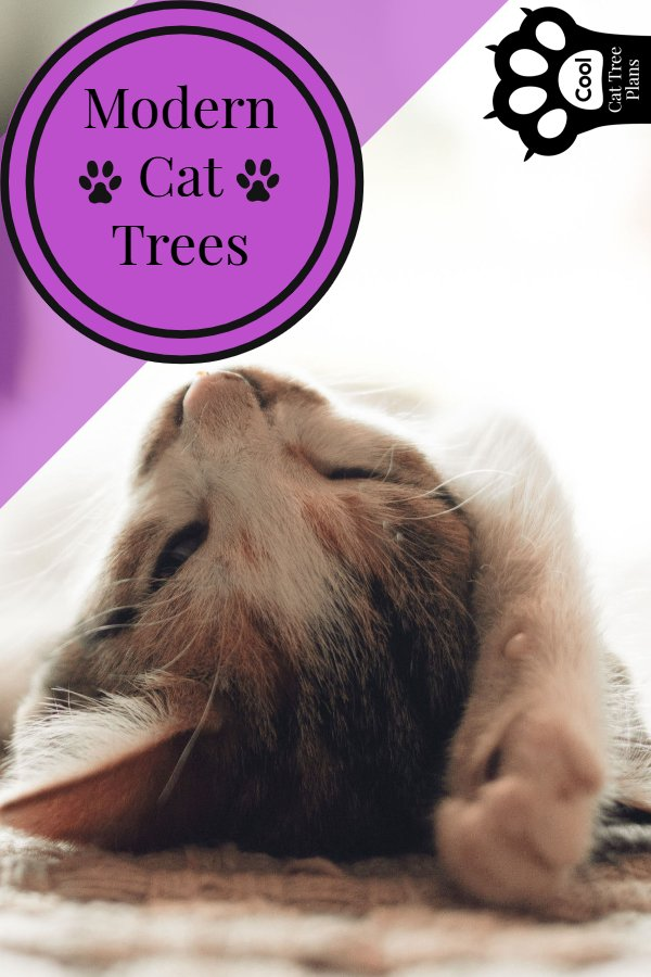 Modern cat trees can make great statement pieces in your house