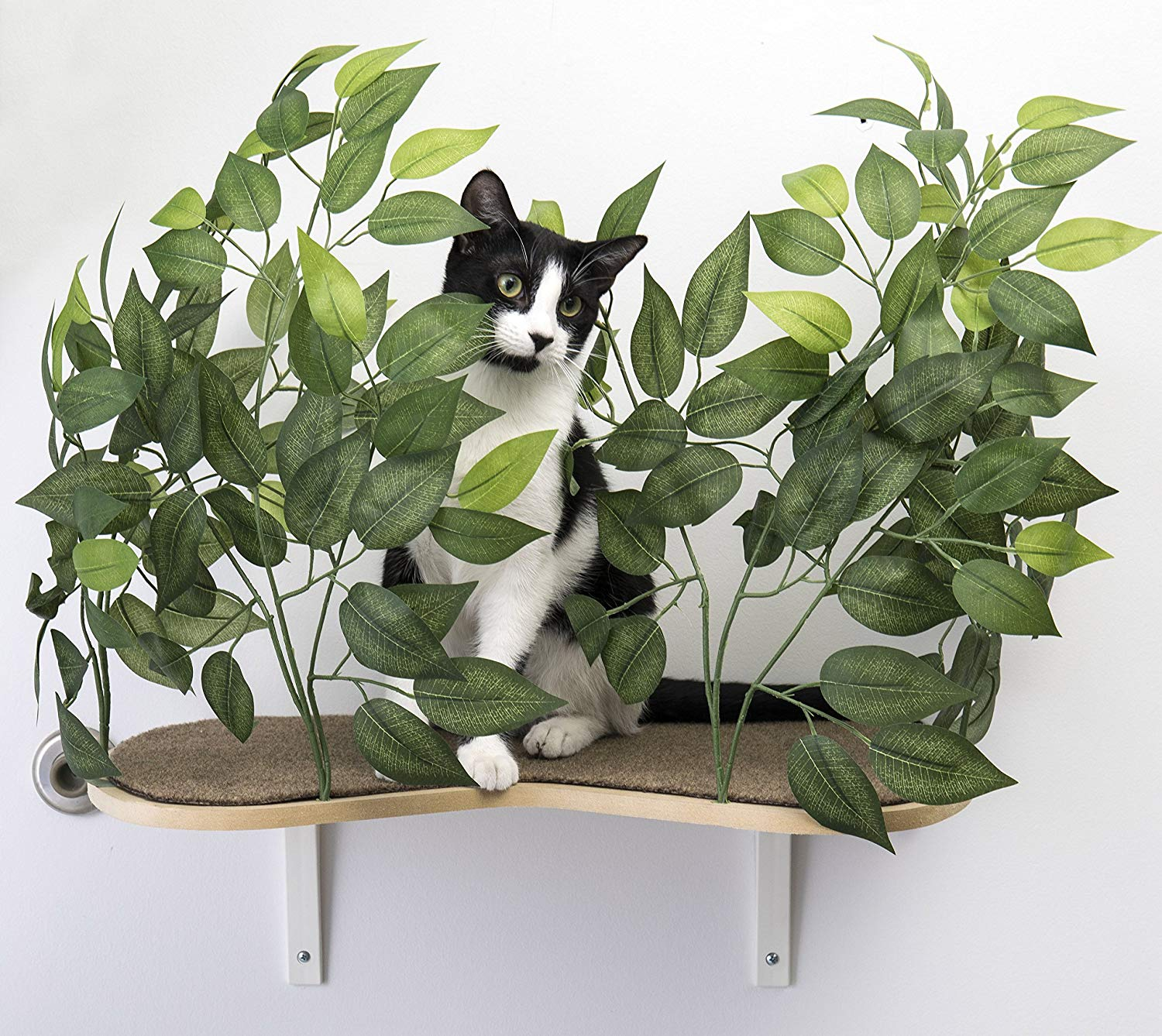 Cat Perch With Pretty Silk Leaves