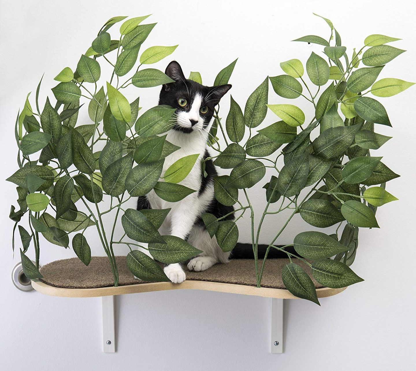 Cat Perch With Pretty Silk Leaves - This wall mounted cat perch really captured our heart. It really stands out among the other cat shelves featured in this post. Lots of PICTURES!