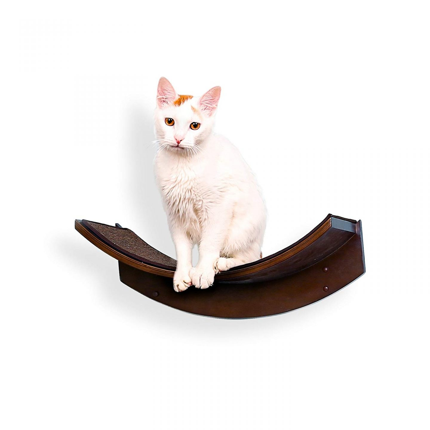 Curved Mahogany Cat Shelf With Replaceable Carpet - Finally a wall mounted cat perch that's easy to clean! But if a cat perch with pretty silk leaves or a stylish wall mounted cat hammock is more your style check out the PICTURES in this post for them too.