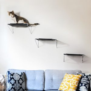 These cat hammock perches can be used above a couch like steps to create a great space up high for them.