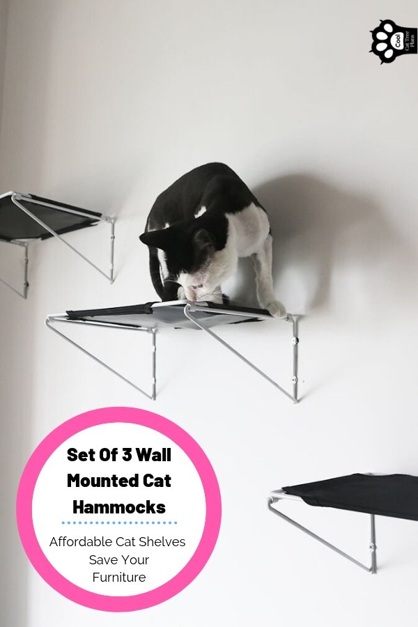 A set of 3 wall mounted cat hammocks can really help you catify your space quickly. Theses cat wall shelves are cheap and effective too!