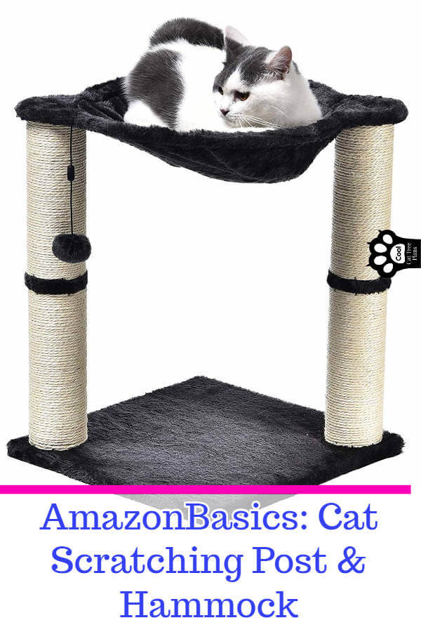 This inexpensive AmazonBasics cat tree is a great cat tree for small spaces because it's compact, has a nice spot to lounge and plenty of things to scratch up that aren't your couch.