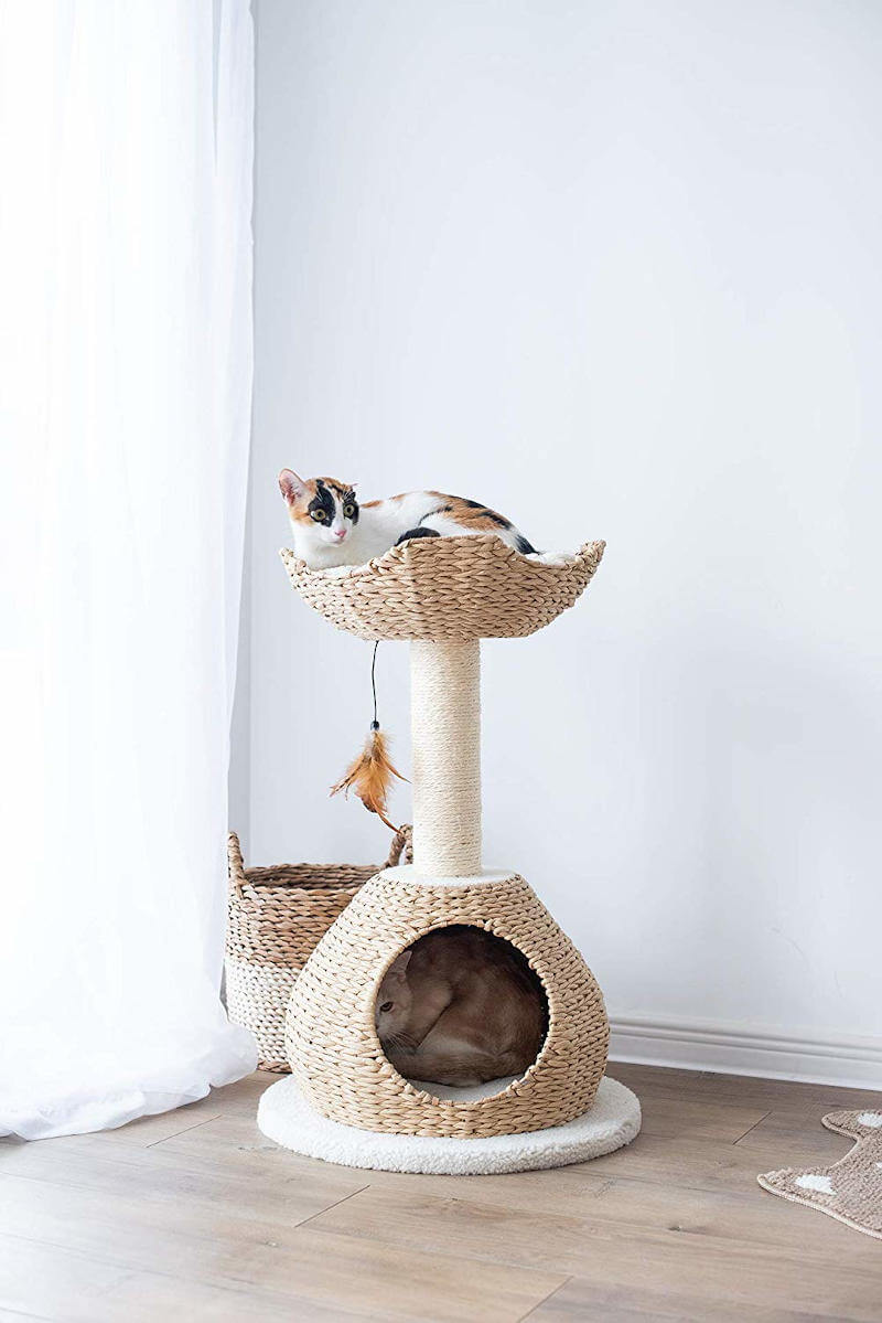 You can see this cat tree for small spaces is well suited for a multi-cat home just as well as a single cat.