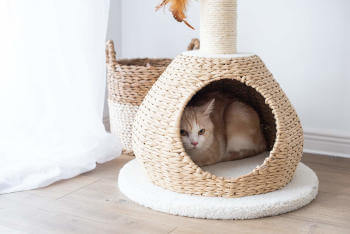 A paper rope cat condo.  Wicker style cat condo with scratching post.