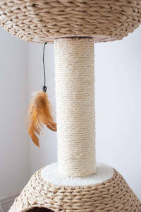 A good closeup on the scratching post and paper rope of this cat tree.