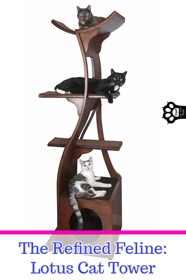 The Refined Feline Lotus cat tower is an amazing solid wood cat tree that works for all kinds of spaces, from small to large.