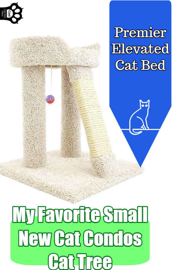 The premier elevated cat bed from New Cat Condos is my favorite small cat tree from them because it really can fit most places, is strong enough to handle even a 20lb Maine Coon and is suitable for older cats.
