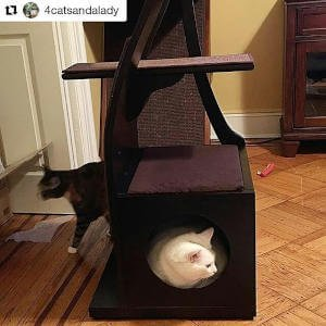 A cozy cat condo is nestled at the bottom of this tall cat tree.