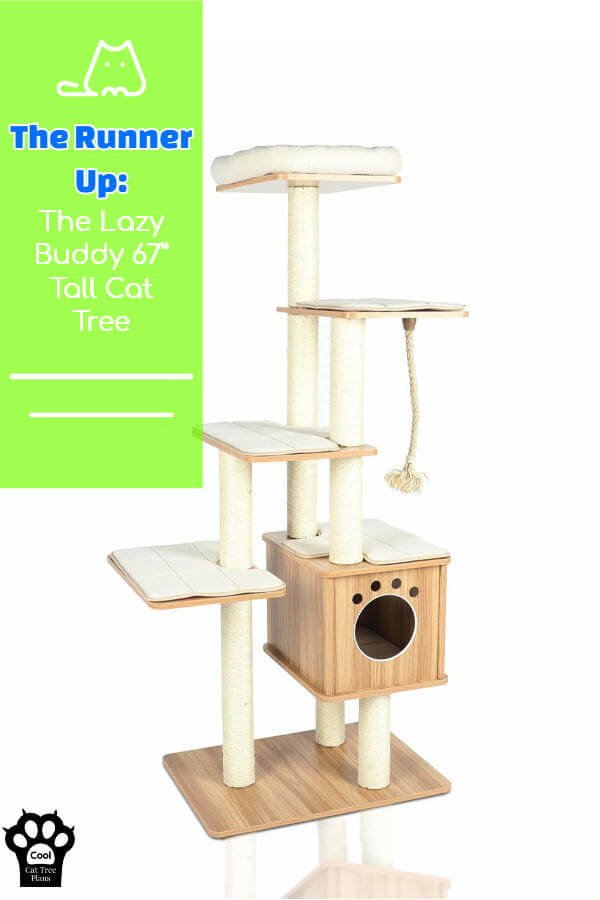 The Lazy Buddy tall cat tree is perfect for large cats like Maine Coons and Ragdolls.  It's cute, tall and easy to clean.