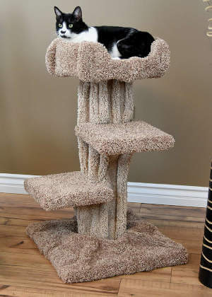 You can easily see how well this cat tree can fit into a home.