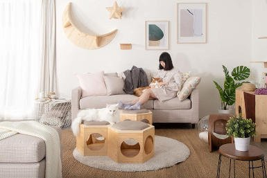 The busy cat hexagonal cat shelf can be turned into a more ... grounded cat bed using the cushion plates.  Use it as an ottoman for yourself and a cozy bed for your cat!