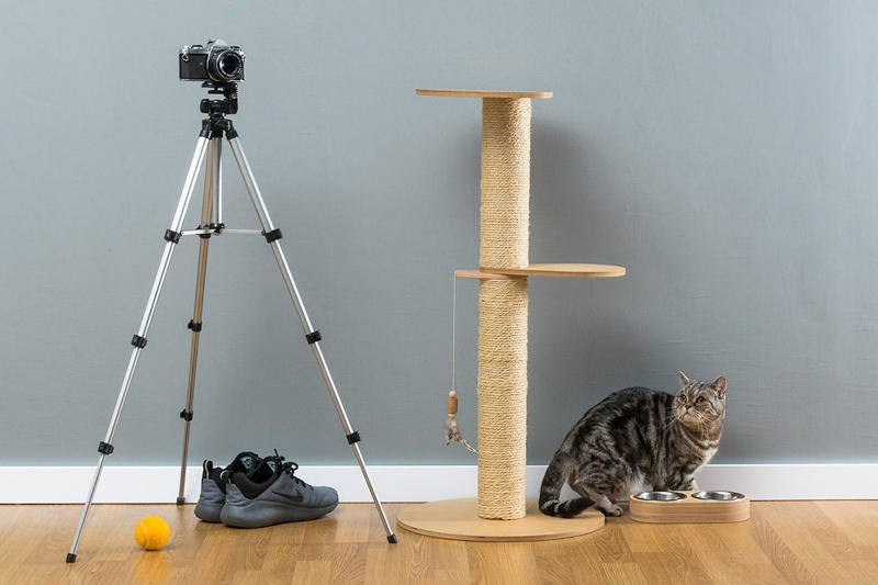 The Marvin is a great sized cat tree for small homes.  It's got areas to climb and a tall scratching post but it doesn't take up a ton of space.