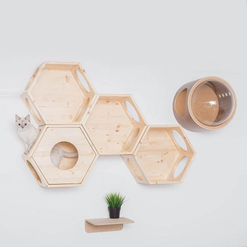 You can see how the cover plate from MyZoo was used to change up and add to this little honeycomb-like kitty shelving system.