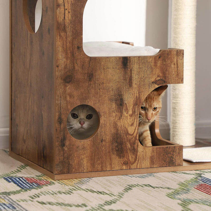 Two cats enjoying the cozy ground level cat condo on this stylish cat tree.