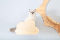 The Moku cat shelf is such a cool cloud design, it's an excellent stand alone piece or they can be great steps up to something like the Solar cat shelf.