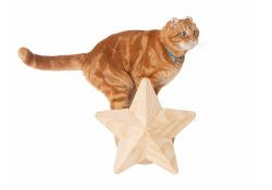 This cat wall step and sisal post is designed to look like a cheerful twinkling star.