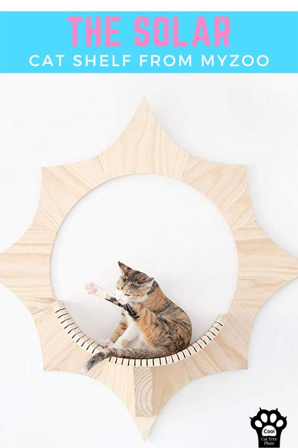 The Solar cat shelf from MyZoo is a functional piece of art that you and your cat can enjoy.  Strong enough to hold large and small cats alike, and sure to start conversations when you have guests.