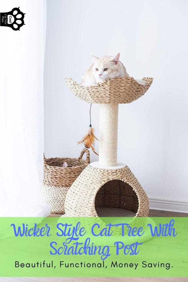 A wicker style cat tree with scratching post like this one can be an excellent money saver and space saver.  This is an excellent cat tree for apartment dwellers.